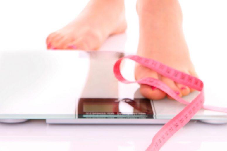 Ganoderma Obesidad